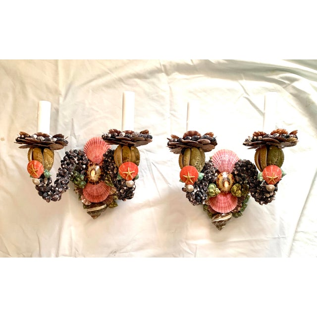 Coffee Two Light Shell Sconces - a Pair For Sale - Image 8 of 8