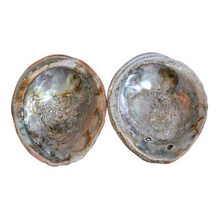 Natural Large Silvery Iridescent Abalone Seashells - a Pair For Sale