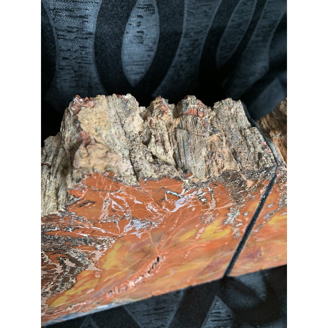 """Red Gem Grade Petrified Wood Bookends Araucaria """"Arizona Rainbow Wood"""" - a Pair For Sale - Image 8 of 12"""