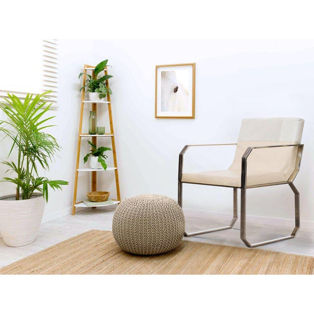 Fletcher Cream Hair on Leather Dining Chair, Accent Modern Furniture,  Living Room, Bedroom, Stainless Steel
