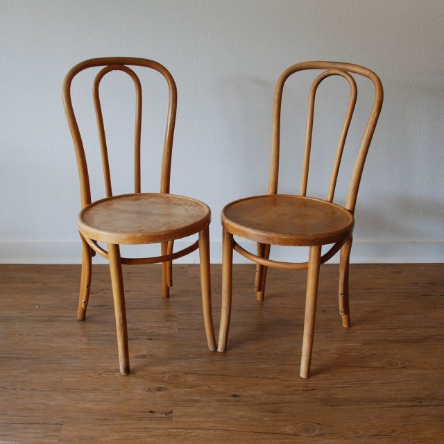 Traditional Thonet Cafe Chairs - Set of 5 For Sale - Image 3 of 6