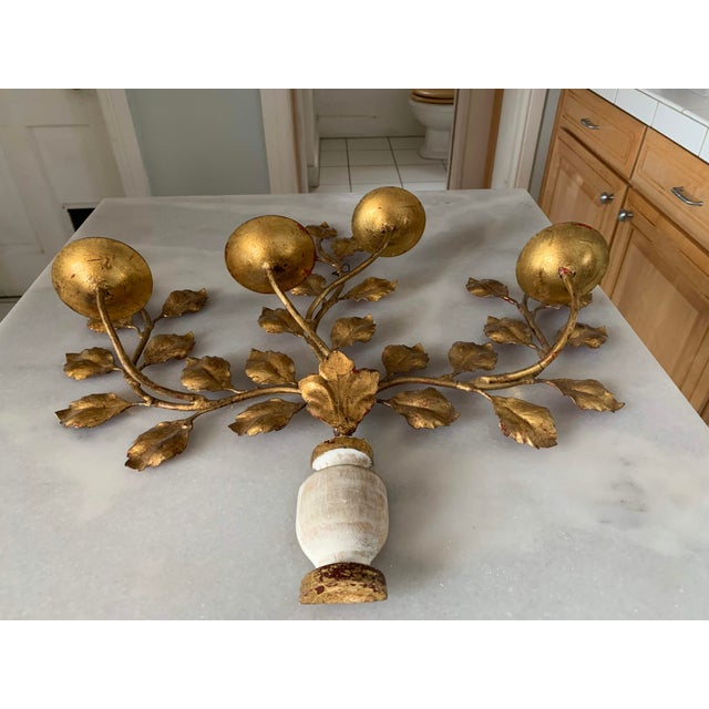 Gold 1950s Italian Carved Vasiform & Leafy Branch Wall Sconce For Sale - Image 7 of 13