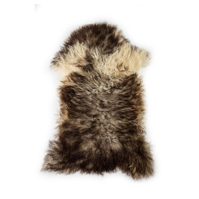 """Contemporary Long Wool Sheepskin Pelt, Handmade Rug - 2'2""""x3'6"""" For Sale In Chicago - Image 6 of 6"""