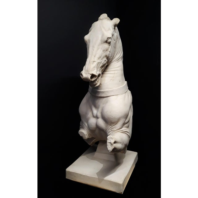 Monumental Continental Horse Sculpture For Sale In Dallas - Image 6 of 8
