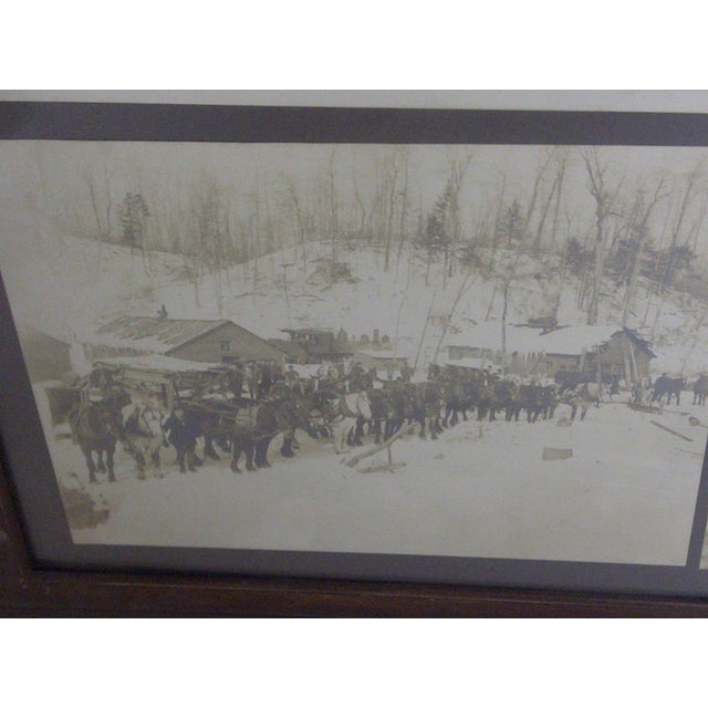 Boyne City, Michigan Logging Photography For Sale In Pittsburgh - Image 6 of 7