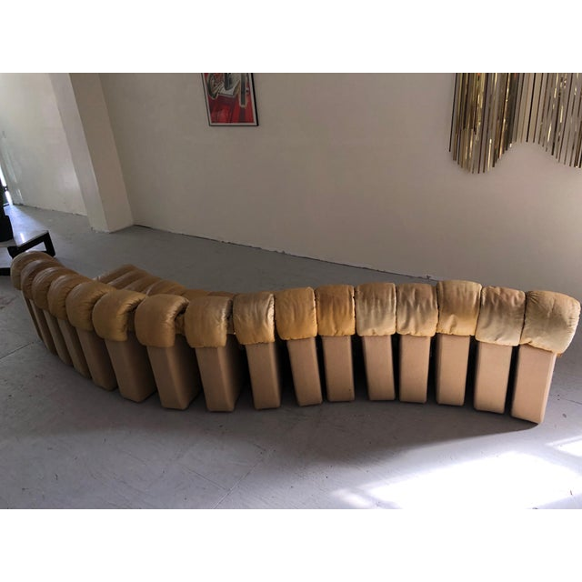 """Leather Monumental De Sede Ds600 """"Non-Stop"""" Snake Sofa For Sale - Image 7 of 9"""