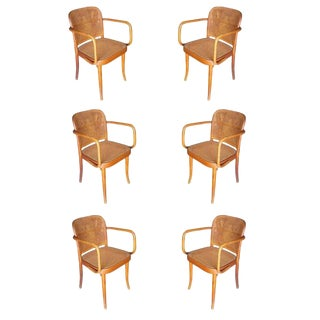 Josef Hoffmann for Stendig Bentwood Cane Dining Chairs, Set of Six For Sale