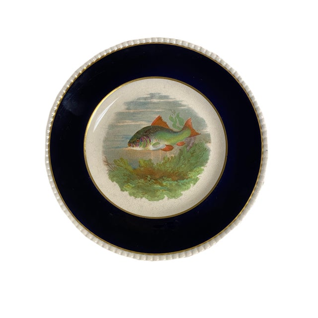 A set of four English Ambassador Ware fish plates. Each plate depicting one of four different fish on an antique white...