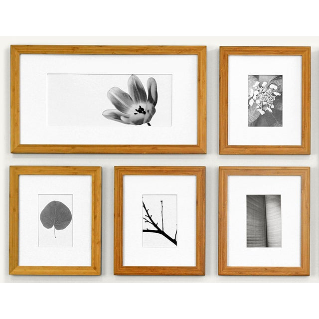 Picturewall Bamboo Frames - Set of 9 - Image 2 of 10