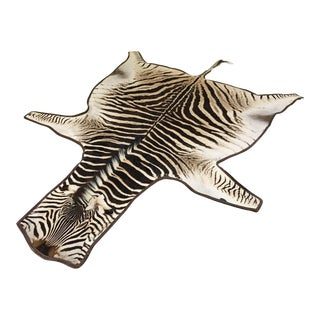 "Forsyth Zebra Hide Rug Trimmed in Leather - 6'10"" x 7'7"""