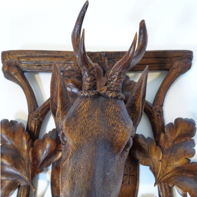 Late 19th Century 19th Century Antique Black Forest Carving of Deer Head For Sale - Image 5 of 9