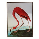 Image of Spanish Canvas Shore Bird Print For Sale
