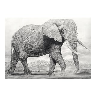 "Contemporary ""Elephant I"" Rick Shaefer Charcoal Print For Sale"