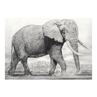 Elephant I Print
