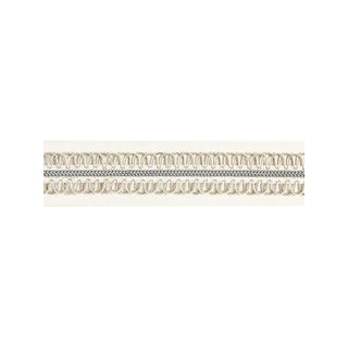Scalamandre Colette Braided Tape, Cloud Fabric For Sale