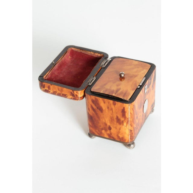 Early 19th Century English Regency Tortoiseshell Tea Caddy For Sale - Image 4 of 11