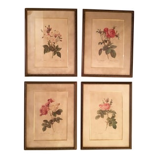 Vintage Botanical Prints - Set of 4