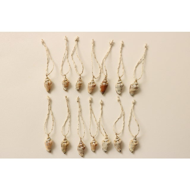 Gold Plated Conch Shell Christmas Ornaments - S/14 - Image 2 of 5