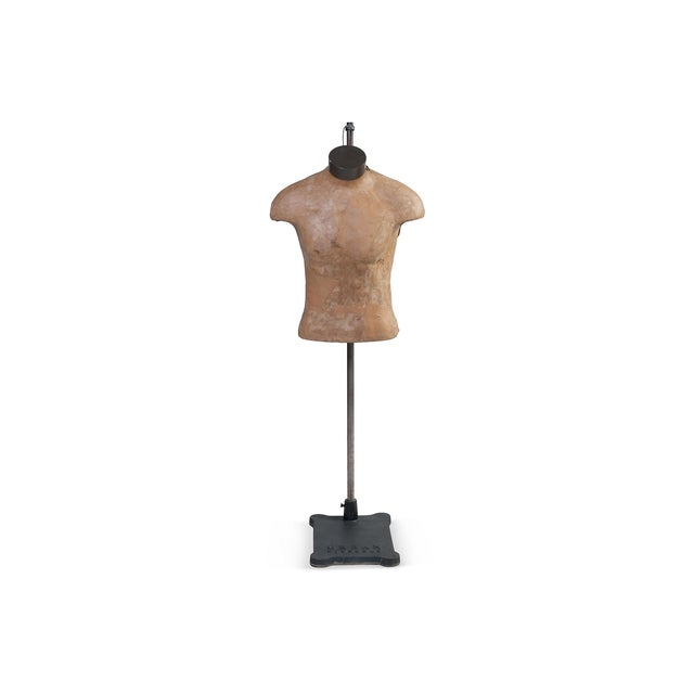 Male Mannequin Torso With Adjustable Stand - Image 3 of 4