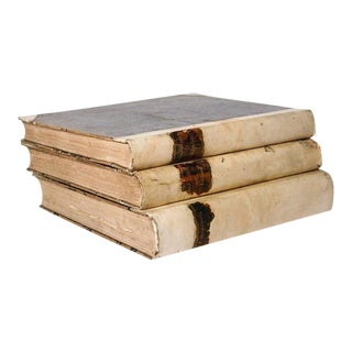Set of Three Large Vellum Books 18th Century For Sale
