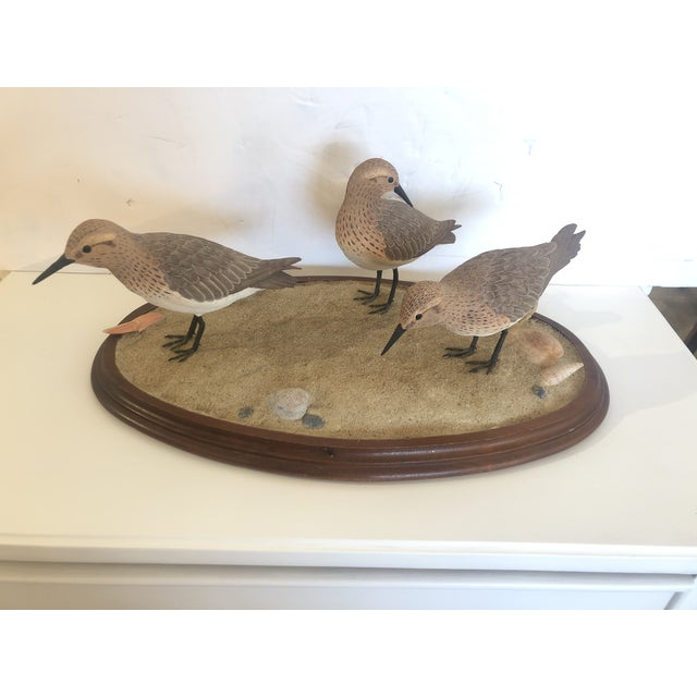 Nantucket Oval Tabletop Sculpture of Carved Wood Sandpipers on the Beach For Sale - Image 11 of 11