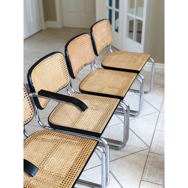 1950s Knoll Authentic Ebonized Beech Cesca Chairs – Set of 7 For Sale In Detroit - Image 6 of 12
