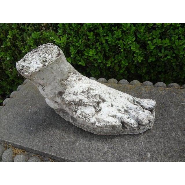Vintage Plaster Foot of Hercules For Sale In Houston - Image 6 of 13