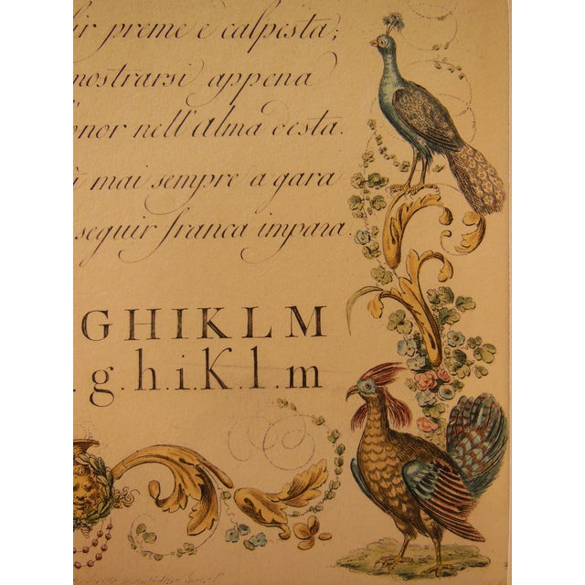 """1790s Illustrated Letter """"M"""" Calligraphy - Image 6 of 7"""