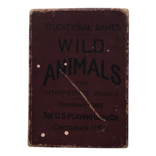 1903 Wild Animals Educational Games Cards For Sale