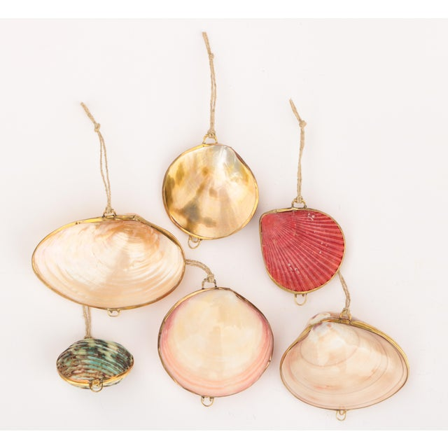 Brass Trimmed Shell Ornaments, Set of 6 For Sale - Image 9 of 9