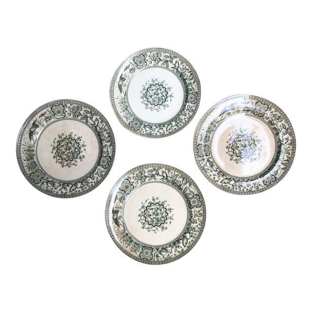 Antique English Plates Davenport Iolanthe Transferware - Set of 4 For Sale