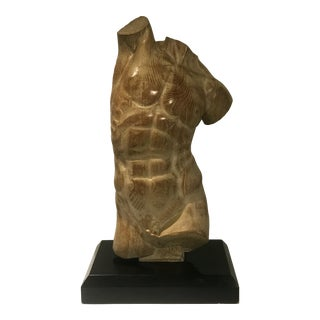Wood Male Torso on Black Stand For Sale
