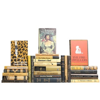 Safari Style Mid Century - Set of Twenty Five Decorative Books For Sale