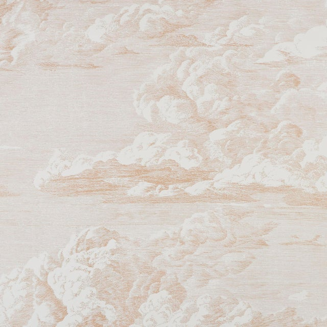 Contemporary Schumacher Cloud Toile Wallpaper in Blush Gold For Sale - Image 3 of 4