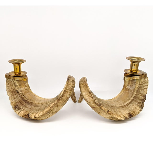 1960's Ram's Horn and Brass Candlesticks - a Pair For Sale In Houston - Image 6 of 10