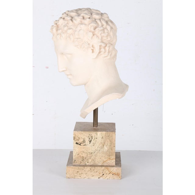Vintage Plaster Bust After Apollo - Image 3 of 7