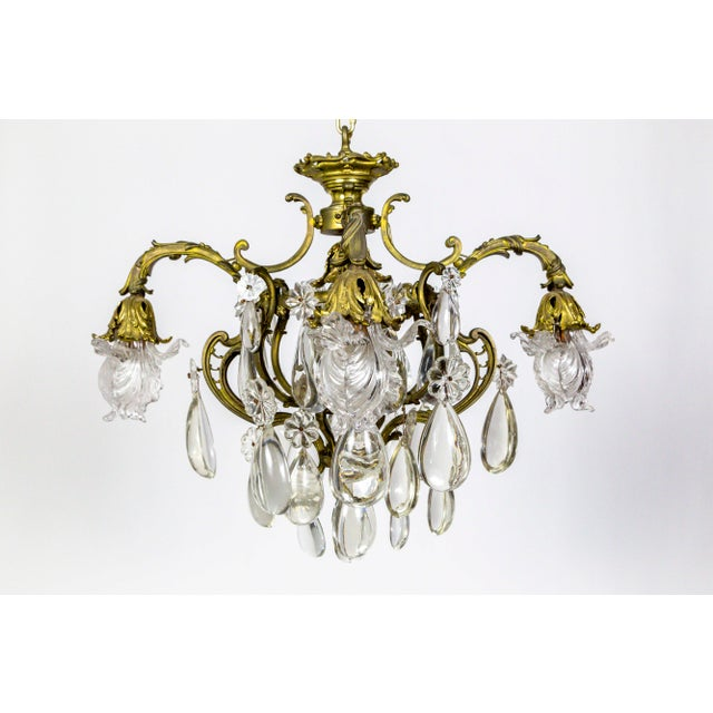 Bronze Belle Epoch Glass Flower and Smooth Almond Crystal Chandelier For Sale - Image 11 of 11