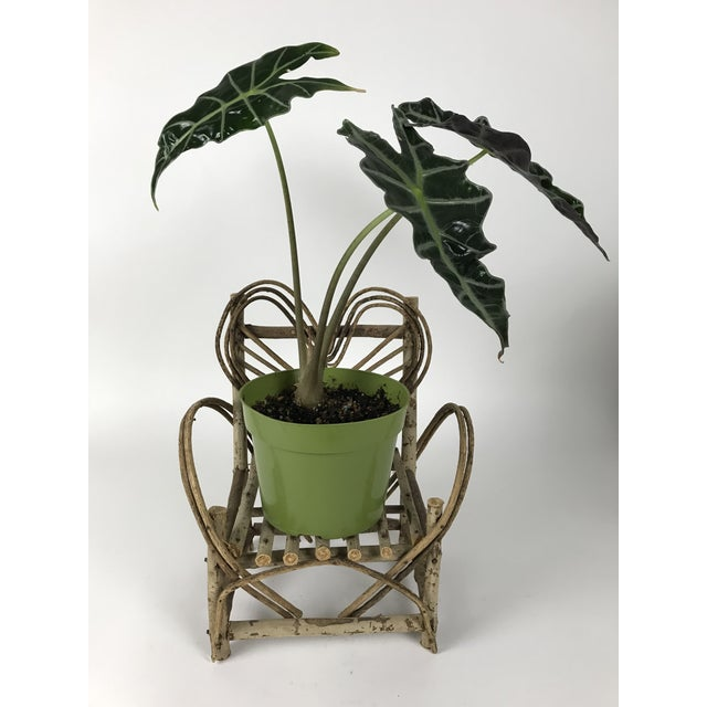 Bent Twigs Heart Chair Plant Stand For Sale - Image 9 of 10