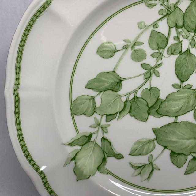 "1960s 1960s Richard Ginori ""Fresh Herbs - Oregano"" Salad Plate For Sale - Image 5 of 12"