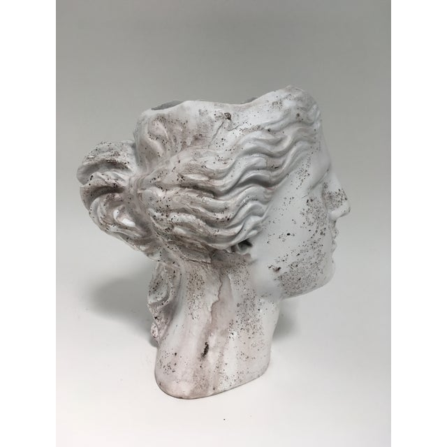 Weathered Venus Bust Head Planter For Sale - Image 4 of 8