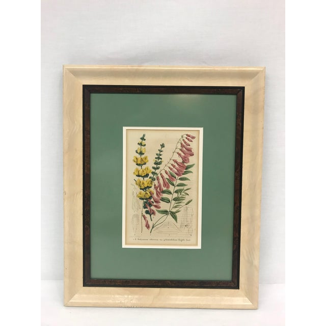 A 19th-century English floral print in wood frame with archival double mat in cool green. Newly framed.