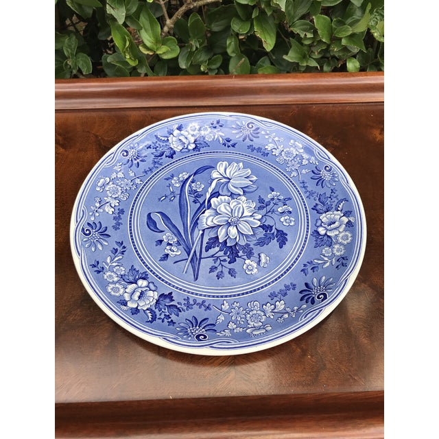 Large Spode Blue Room Collection Botanical Plate/Platter For Sale In West Palm - Image 6 of 7