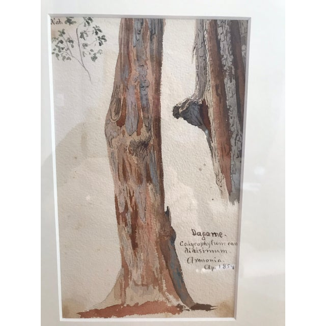 Traditional Charles De Wolf Brownell Watercolors - a Pair For Sale - Image 4 of 9