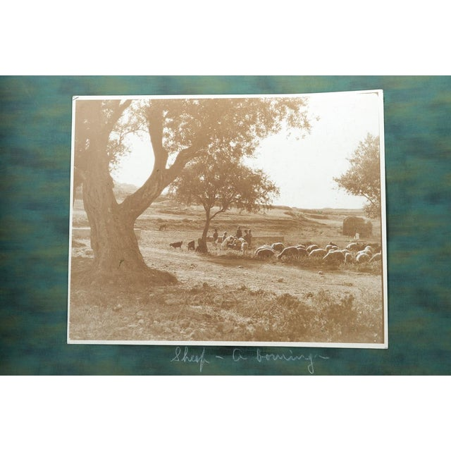 1920s 1920s Holy Land Photo Album For Sale - Image 5 of 9