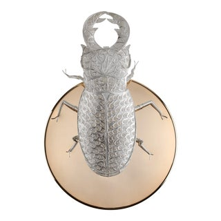 Covet Paris Filigree Lucanus Wall Lamp For Sale