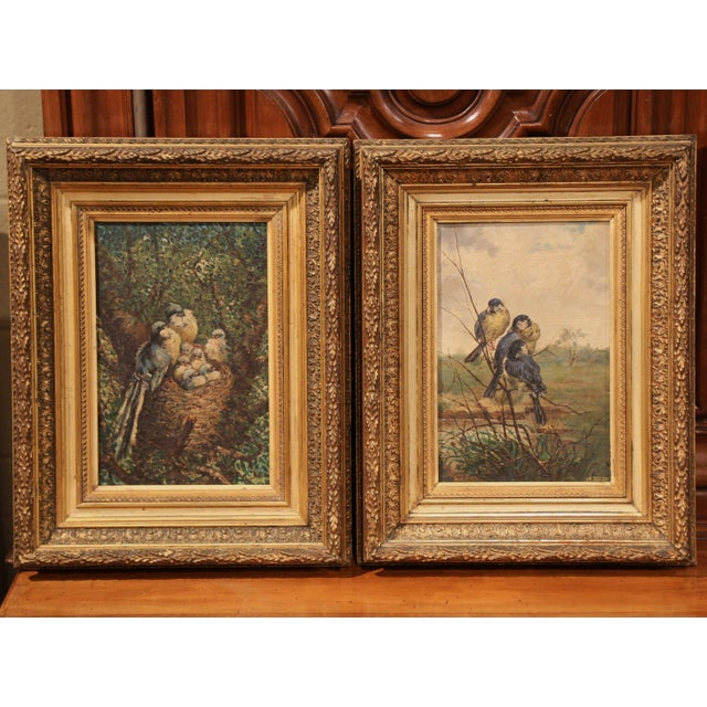 Late 19th Century Pair of 19th Century French Birds Oil Paintings in Gilt Frames Signed Delor For Sale - Image 5 of 9