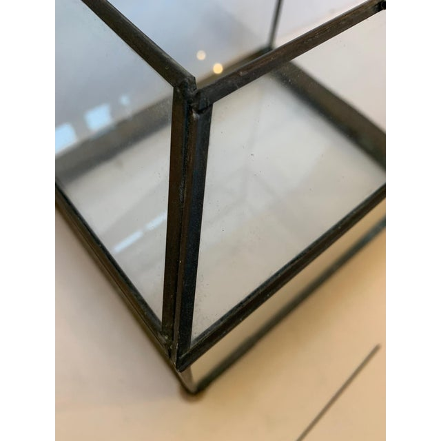 Vintage Glass and Metal Terrarium For Sale In Philadelphia - Image 6 of 9