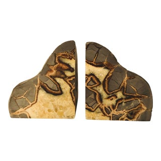 Raw Cut Polished Septarian Stone Bookends - a Pair For Sale