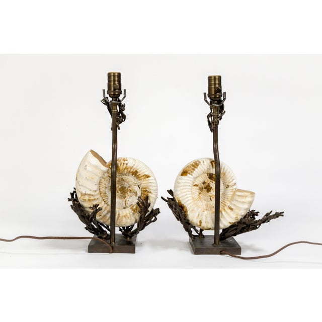 Gold Fossilized Nautilus & Bronze Laurasia Table Lamp by Tuell + Reynolds (2 Available) For Sale - Image 8 of 13