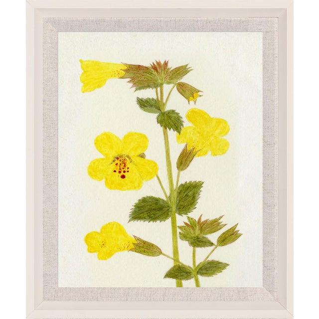 Contemporary Hubbard Flower, Small: 2912 Artwork, Framed Artwork For Sale - Image 3 of 3